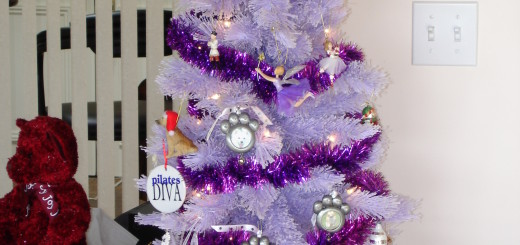 christmas2012 (47)